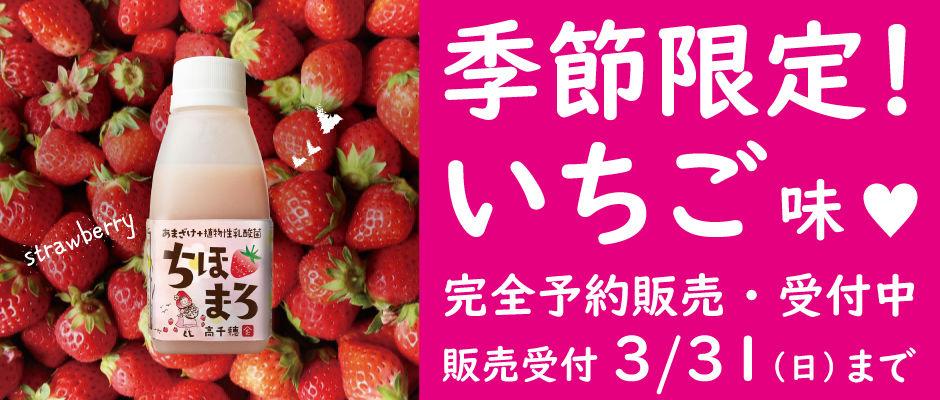 季節限定!ちほまろ苺味♪