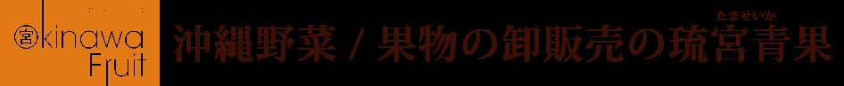 琉宮青果の夏ギフト販売特設サイト