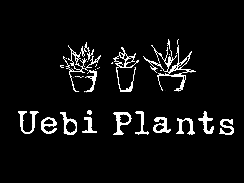 Uebi  Plants